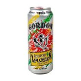 Bière Gordon Tequila Xplosion - 50cl